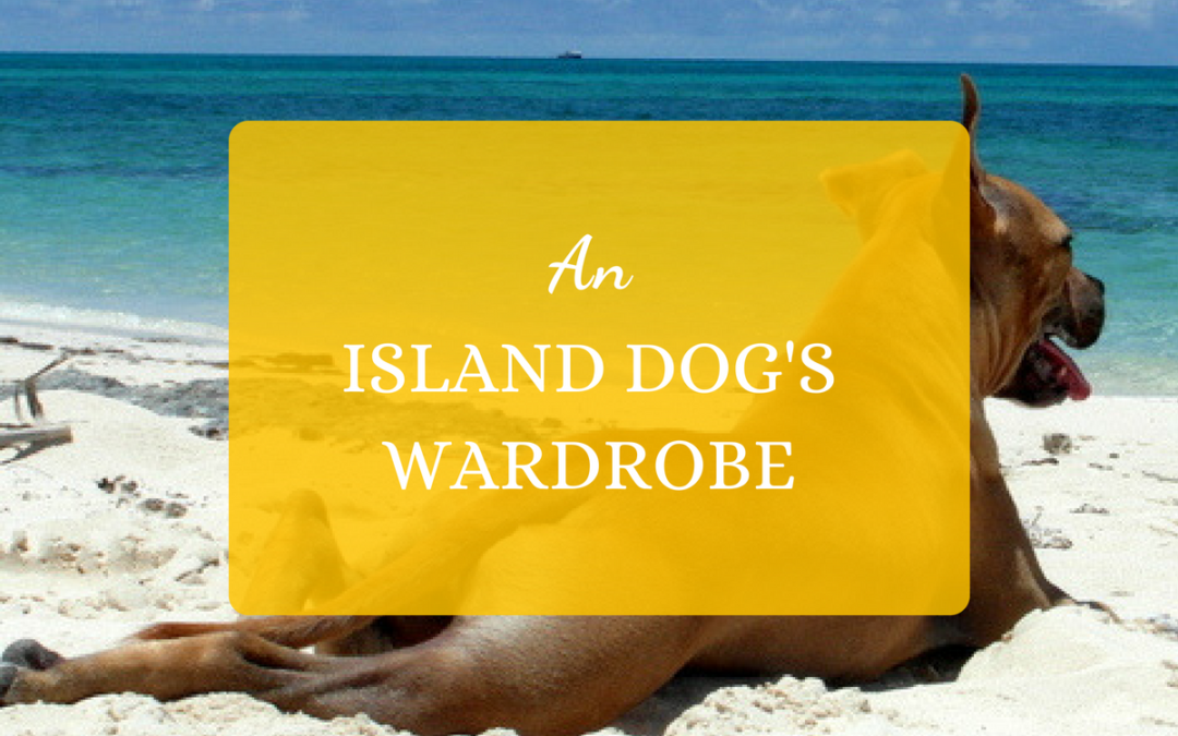 An Island Dog's Wardrobe