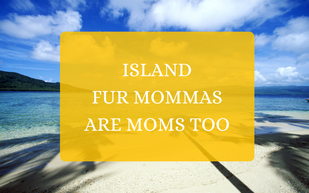 Island Fur Mommas Are Moms Too