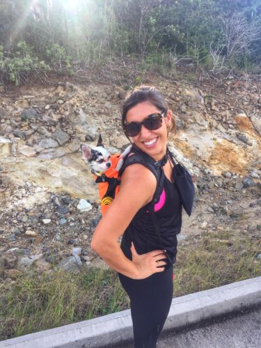 The K9 Sport Sack dog backpack - great for hiking